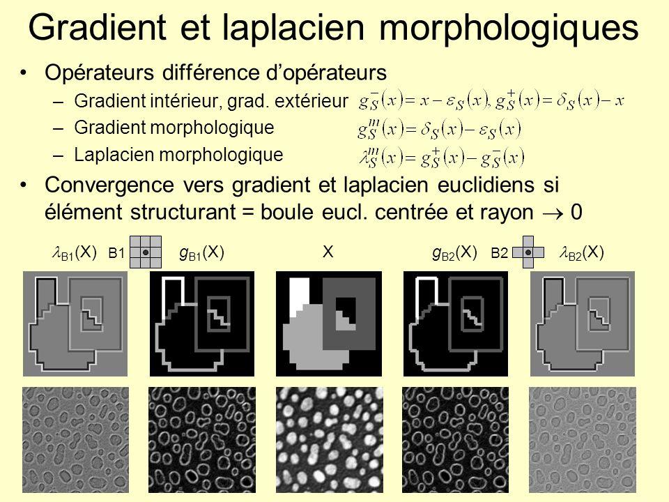 Gradient et laplacien morphologiques