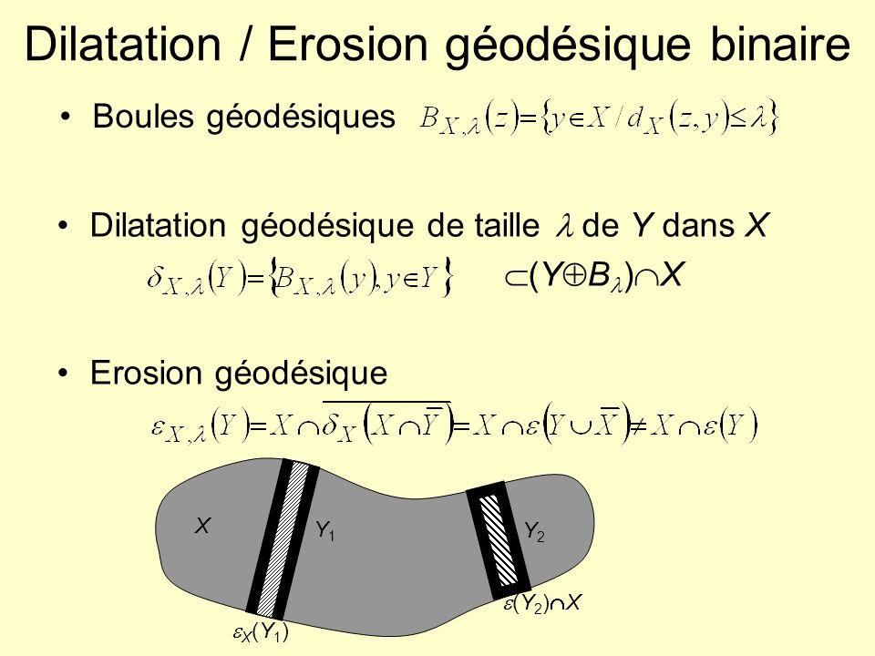 Dilatation / Erosion géodésique binaire