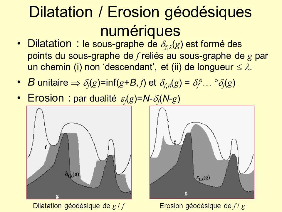 Dilatation / Erosion géodésiques numériques