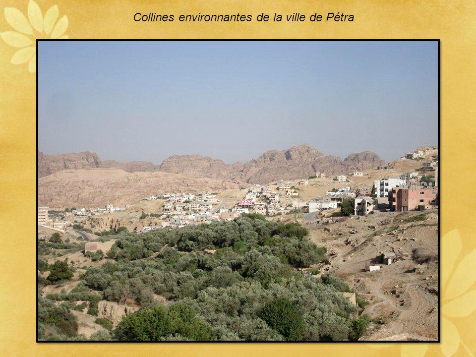 Collines environnantes de la ville de Pétra