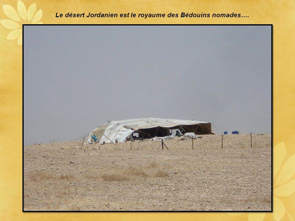 Le désert Jordanien est le royaume des Bédouins nomades….
