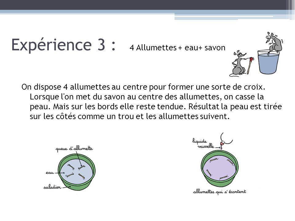 Expérience 3 : 4 Allumettes + eau+ savon