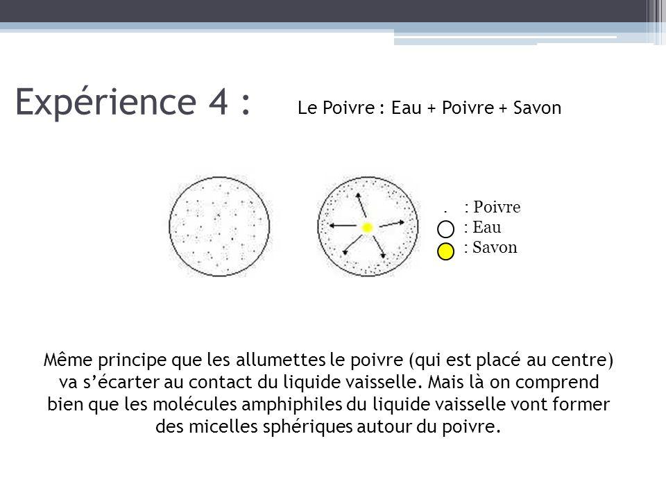 Expérience 4 : Le Poivre : Eau + Poivre + Savon