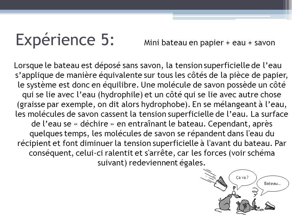 Expérience 5: Mini bateau en papier + eau + savon
