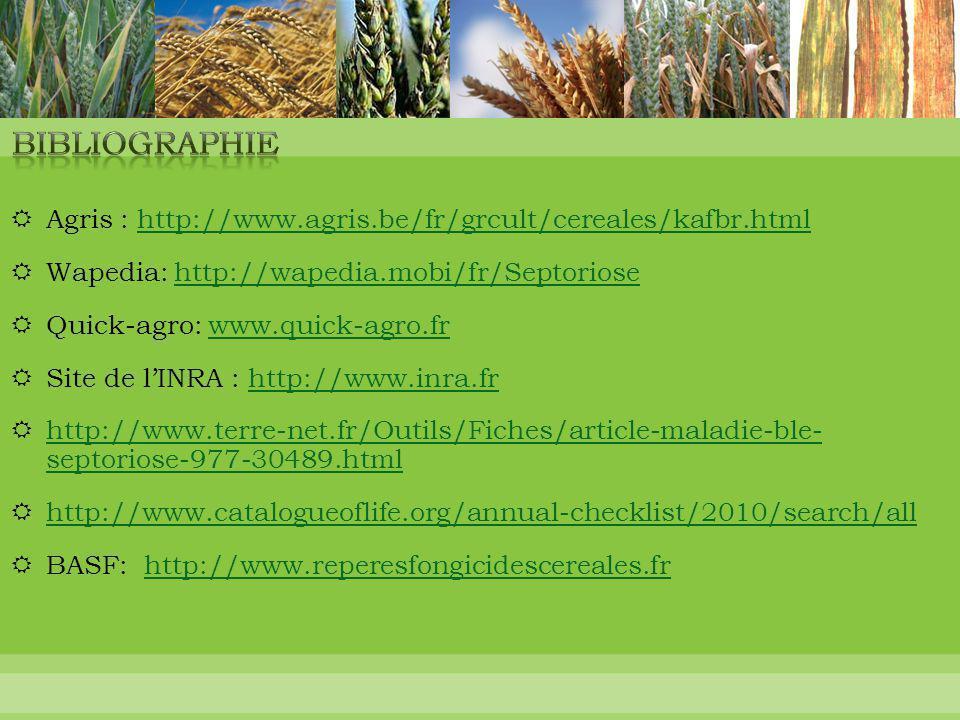 Bibliographie Agris : http://www.agris.be/fr/grcult/cereales/kafbr.html. Wapedia: http://wapedia.mobi/fr/Septoriose.