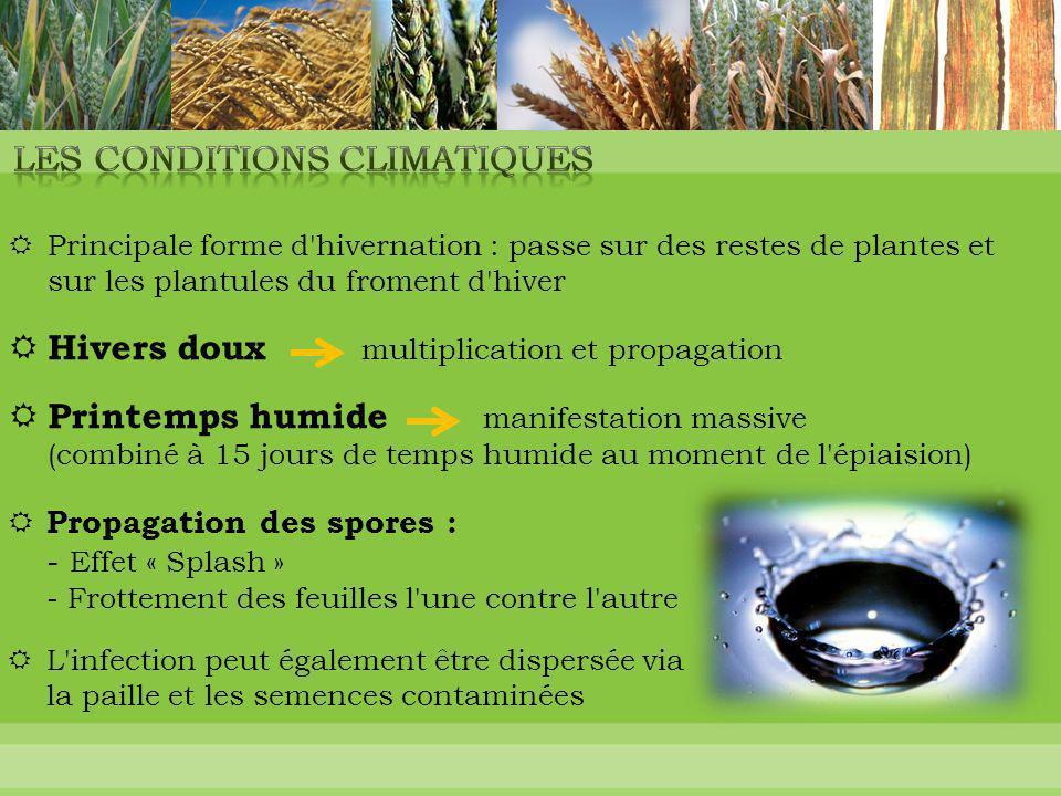Les conditions climatiques