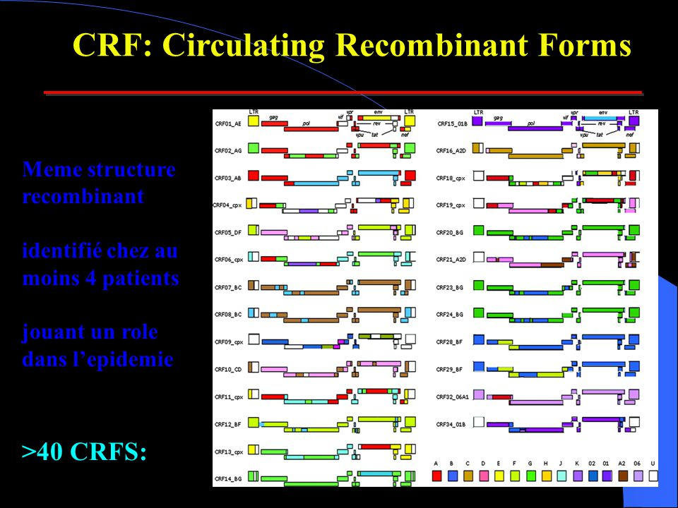 CRF: Circulating Recombinant Forms
