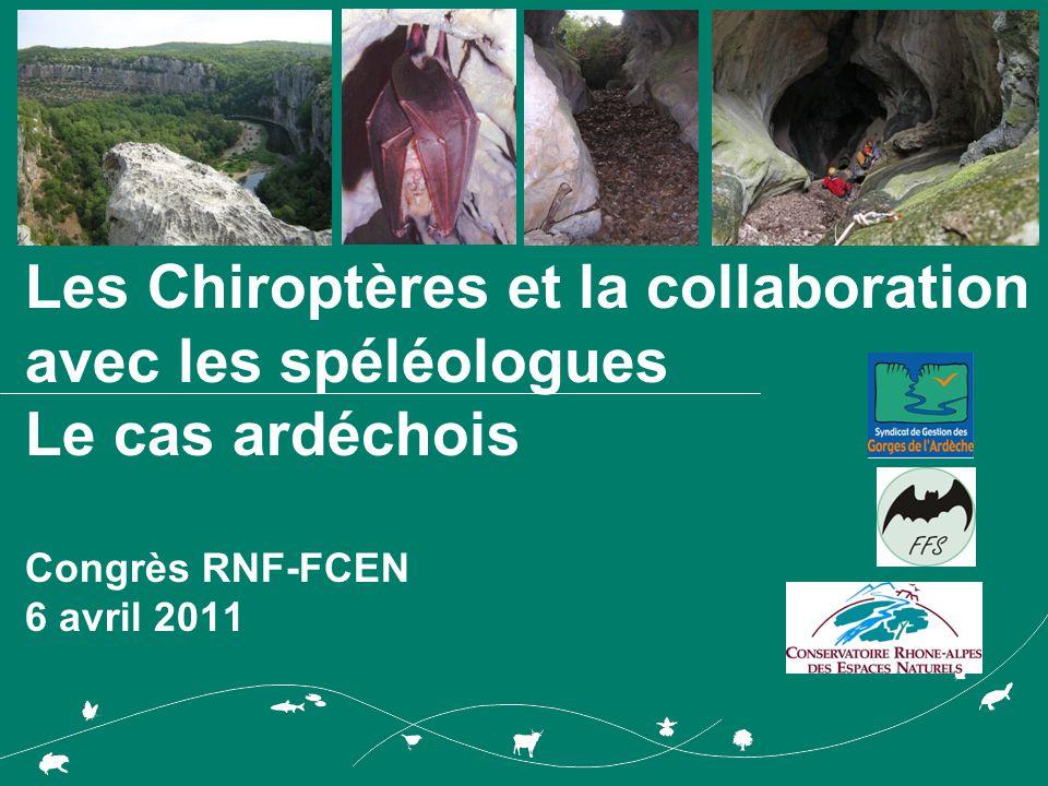 Les Chiroptères et la collaboration avec les spéléologues Le cas ardéchois Congrès RNF-FCEN 6 avril 2011