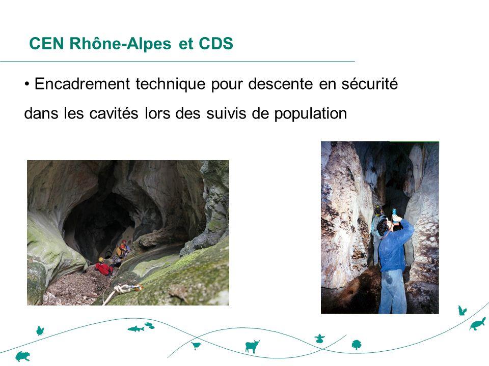 CEN Rhône-Alpes et CDS Encadrement technique pour descente en sécurité dans les cavités lors des suivis de population.