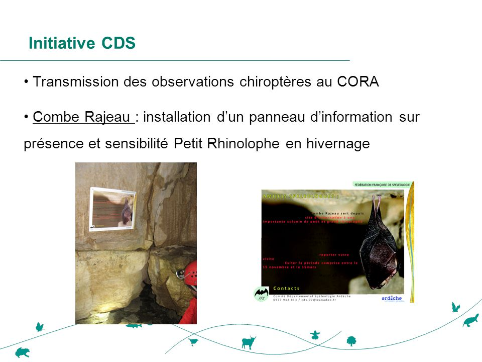Initiative CDS Transmission des observations chiroptères au CORA