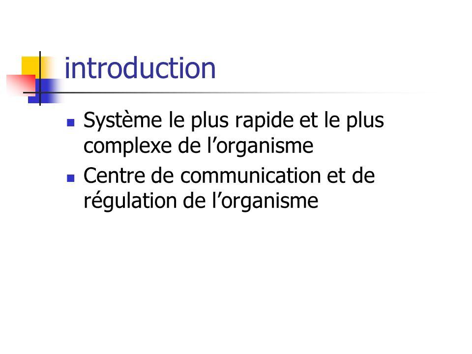 introduction Système le plus rapide et le plus complexe de l'organisme