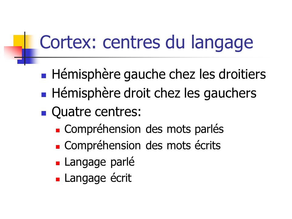 Cortex: centres du langage