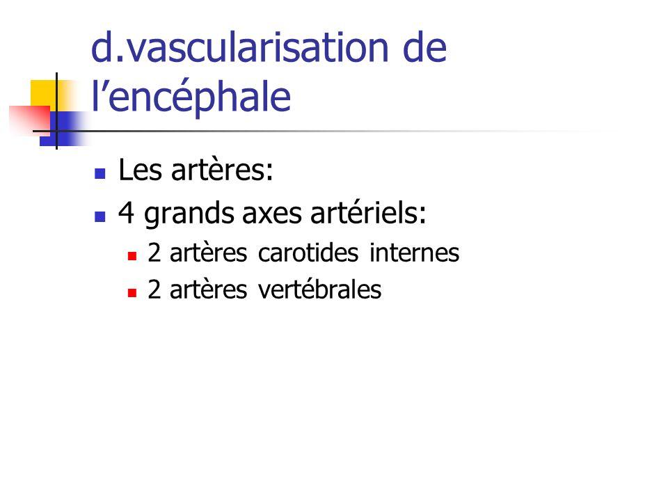 d.vascularisation de l'encéphale