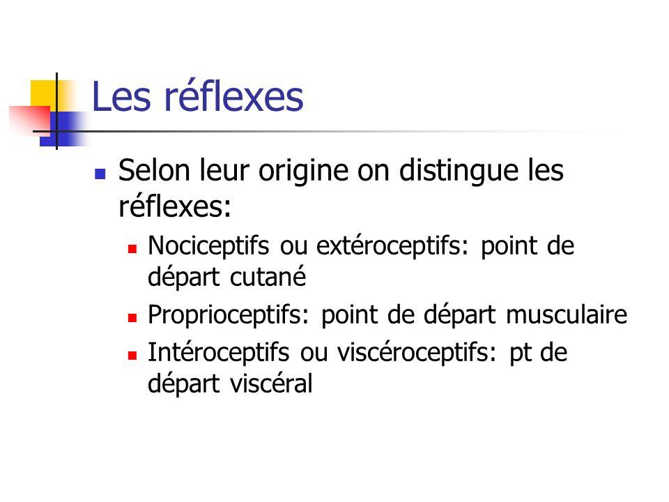 Les réflexes Selon leur origine on distingue les réflexes: