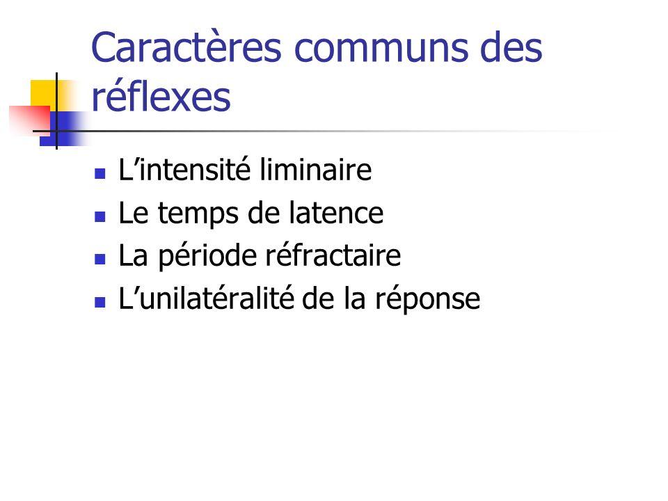 Caractères communs des réflexes