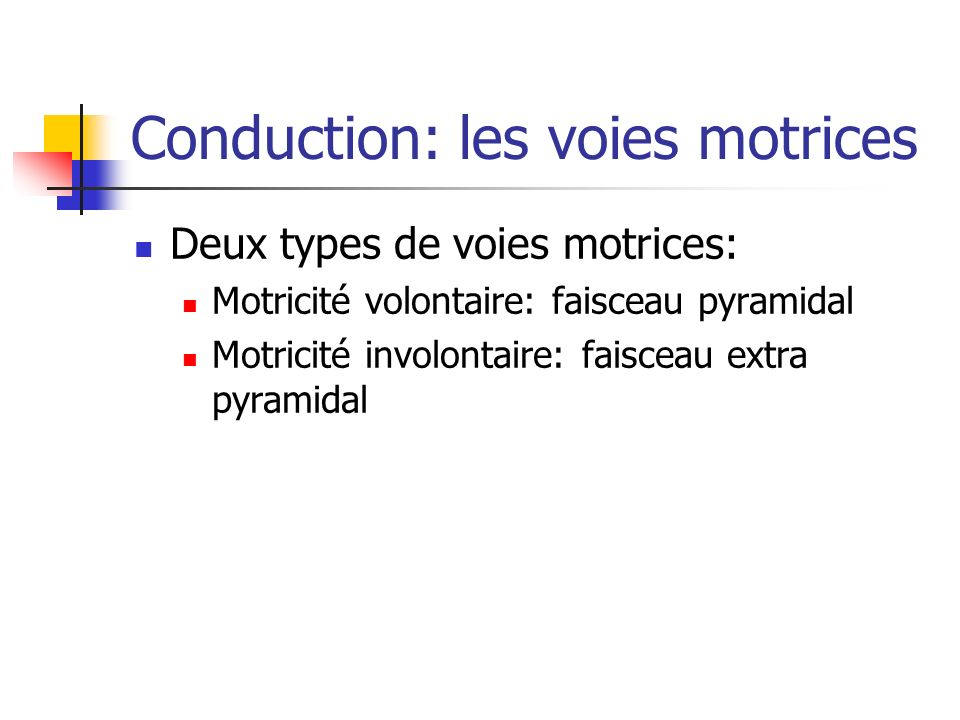 Conduction: les voies motrices