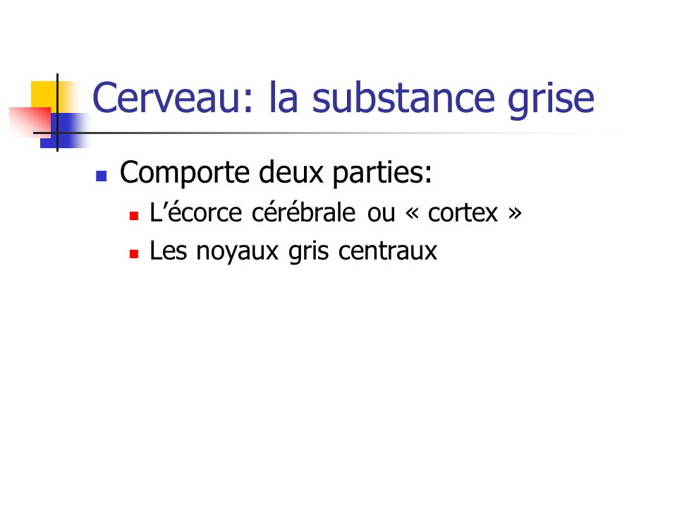Cerveau: la substance grise