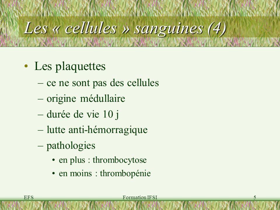 Les « cellules » sanguines (4)