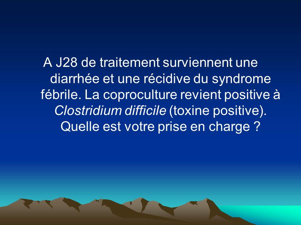 A J28 de traitement surviennent une diarrhée et une récidive du syndrome fébrile.