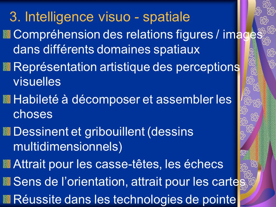 3. Intelligence visuo - spatiale