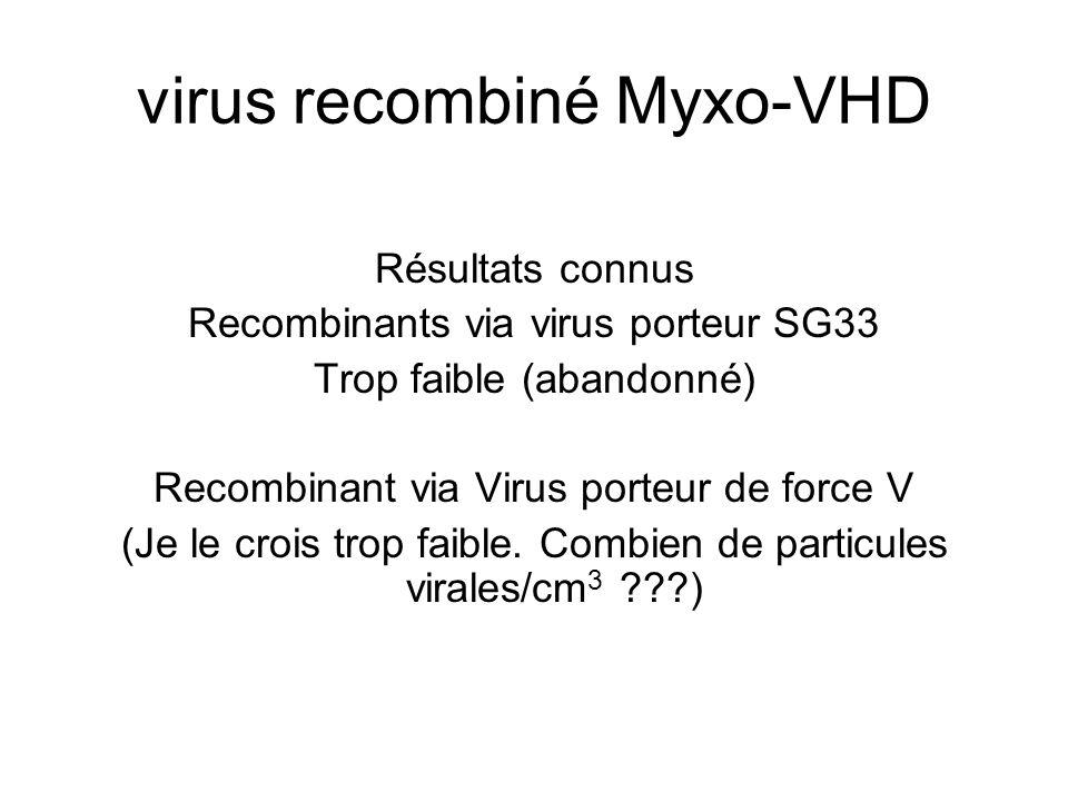 virus recombiné Myxo-VHD