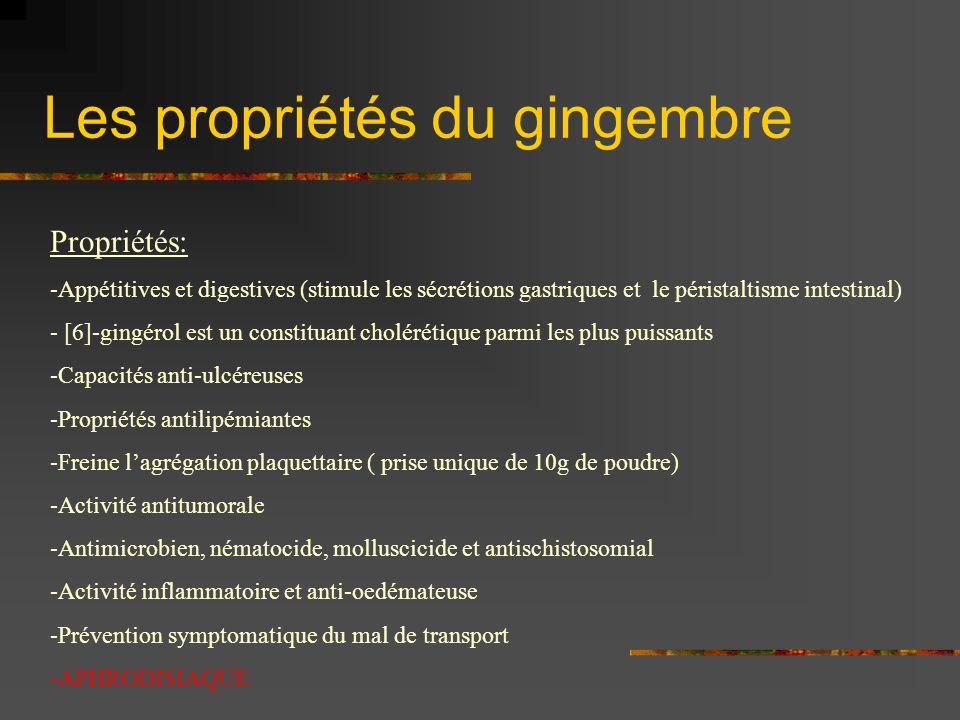 Les propriétés du gingembre