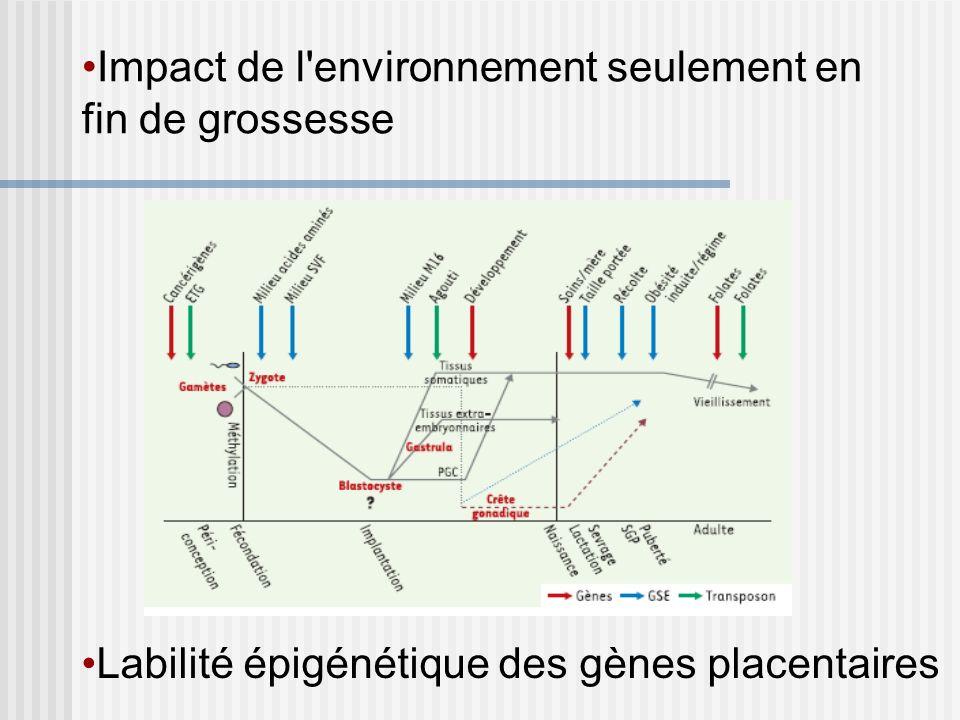 Labilité épigénétique des gènes placentaires