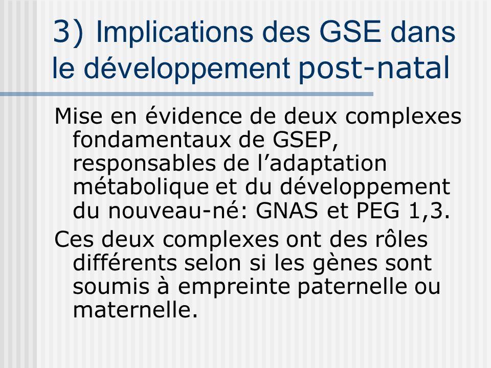 3) Implications des GSE dans le développement post-natal
