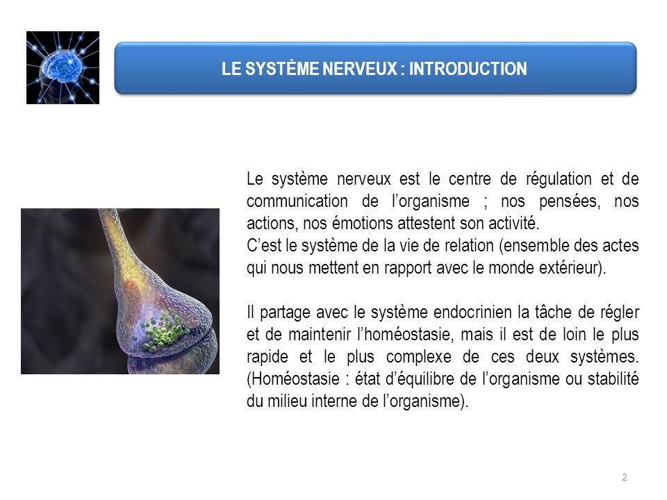 LE SYSTÈME NERVEUX : INTRODUCTION