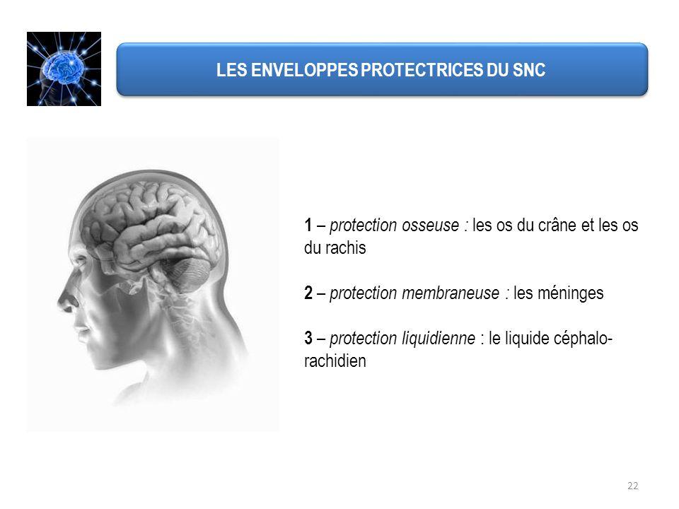 LES ENVELOPPES PROTECTRICES DU SNC