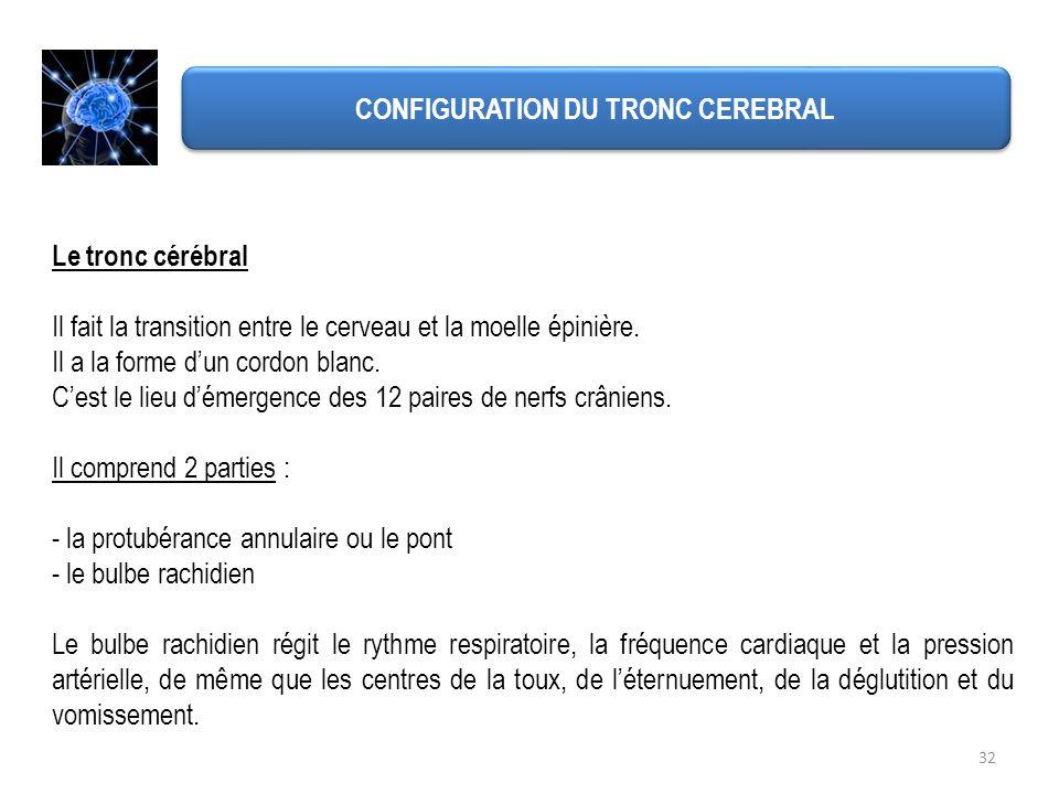 CONFIGURATION DU TRONC CEREBRAL