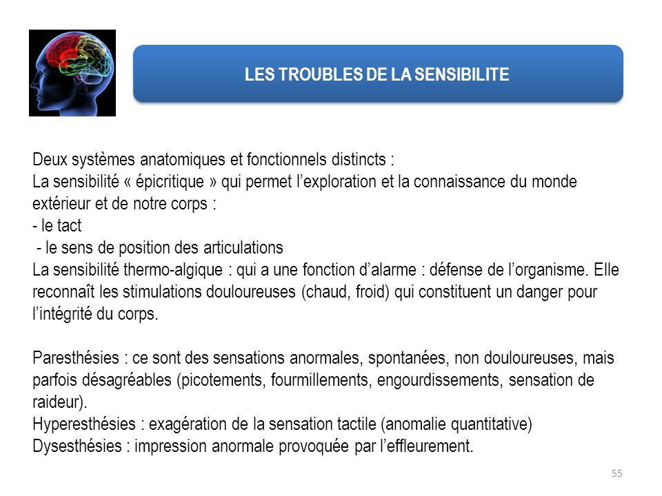 LES TROUBLES DE LA SENSIBILITE