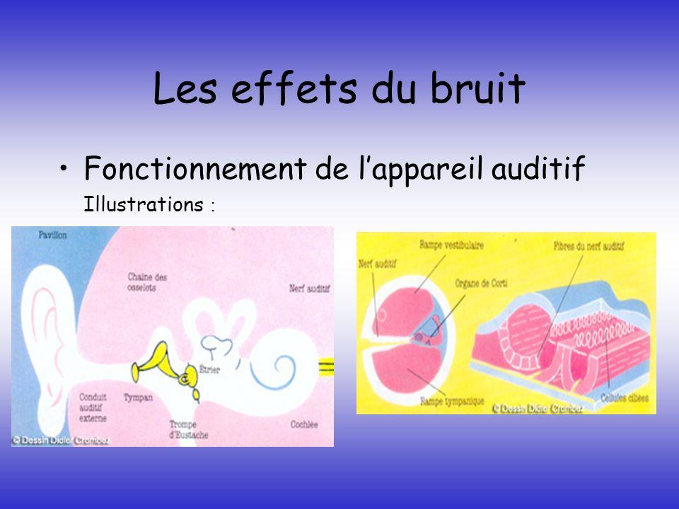 Les effets du bruit Fonctionnement de l'appareil auditif
