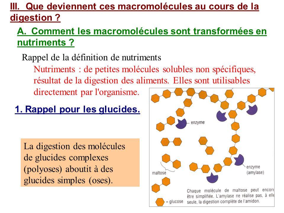 III. Que deviennent ces macromolécules au cours de la digestion