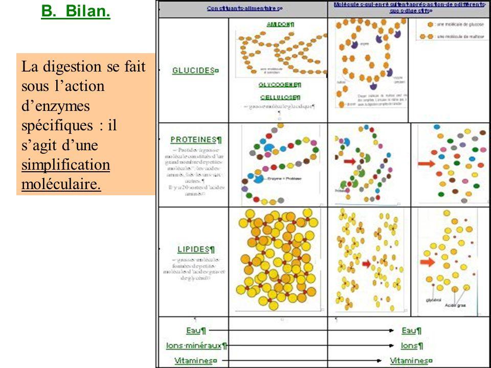 B. Bilan.