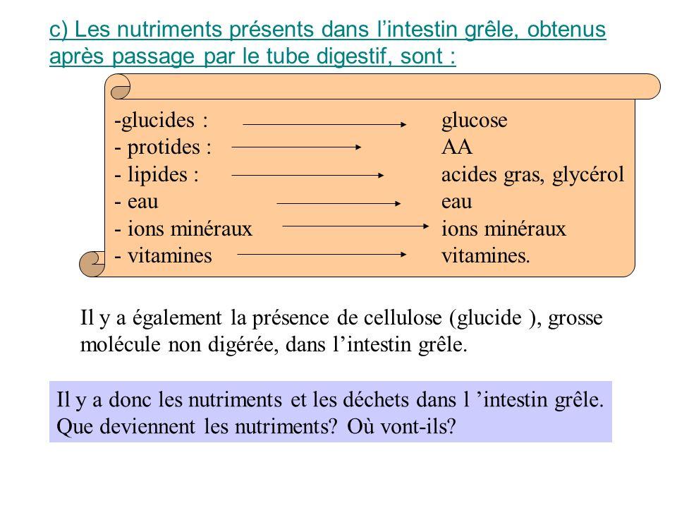 c) Les nutriments présents dans l'intestin grêle, obtenus après passage par le tube digestif, sont :