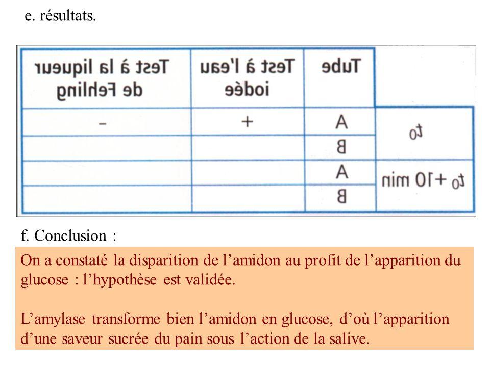 e. résultats. f. Conclusion : On a constaté la disparition de l'amidon au profit de l'apparition du glucose : l'hypothèse est validée.