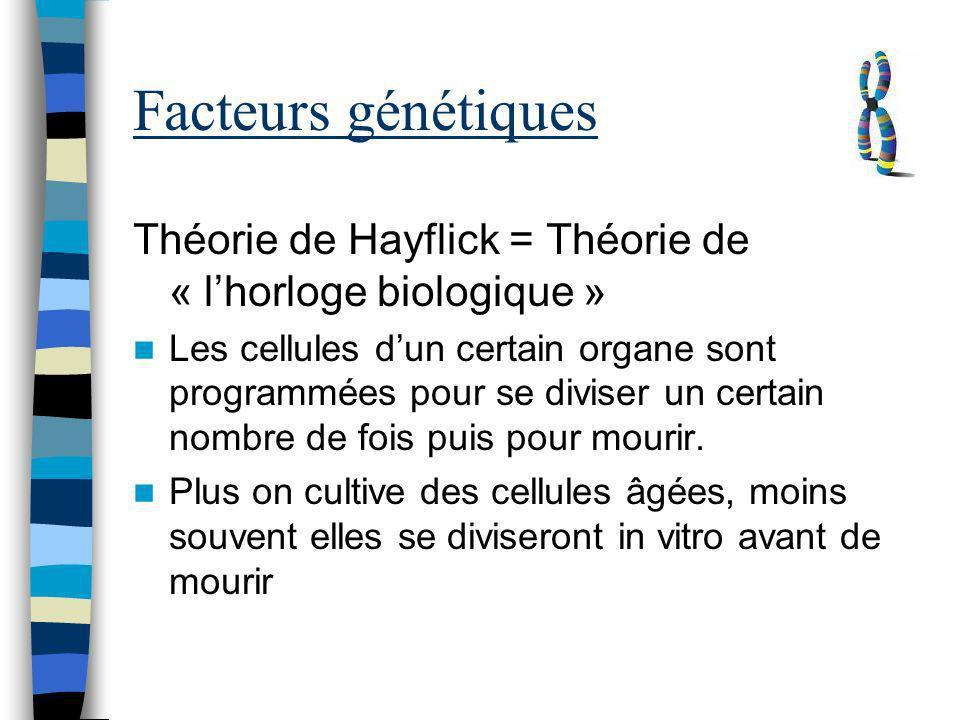 Facteurs génétiques Théorie de Hayflick = Théorie de « l'horloge biologique »