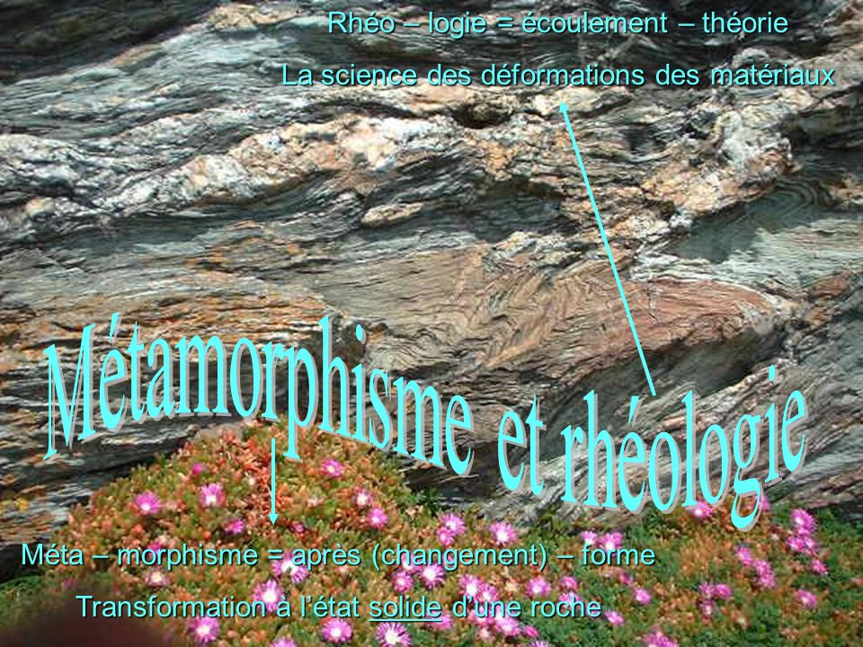 Métamorphisme et rhéologie