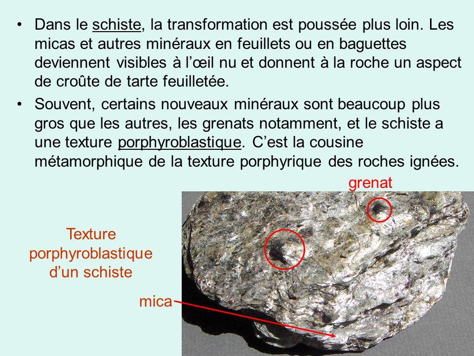 Texture porphyroblastique d'un schiste