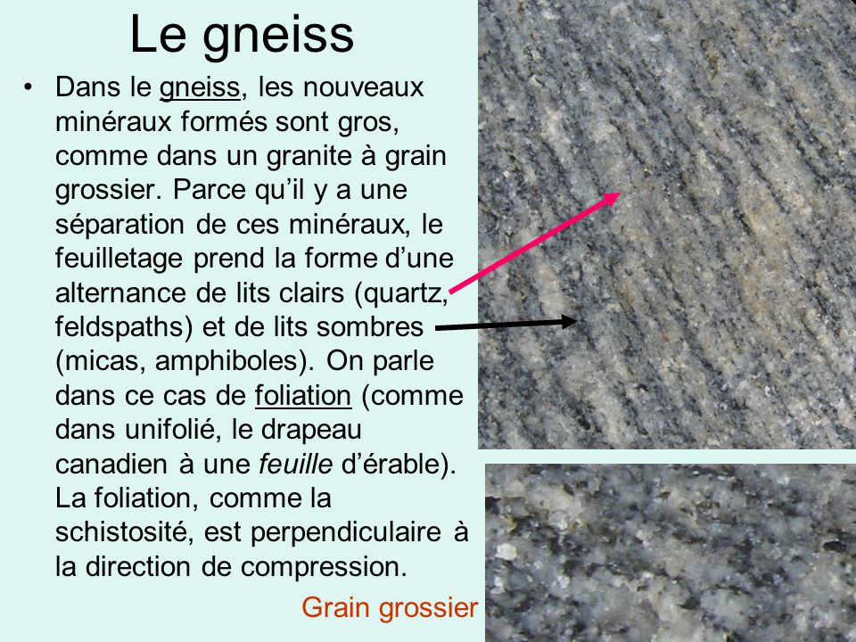 Le gneiss