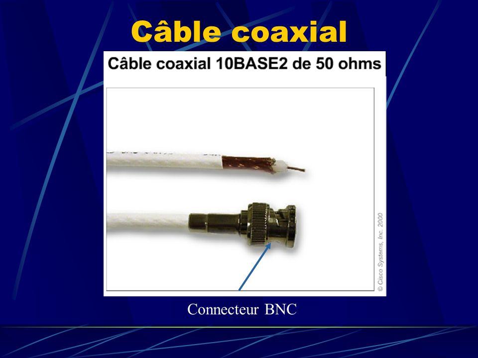 Câble coaxial Connecteur BNC