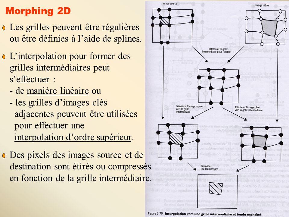 Morphing 2D Les grilles peuvent être régulières. ou être définies à l'aide de splines. L'interpolation pour former des.