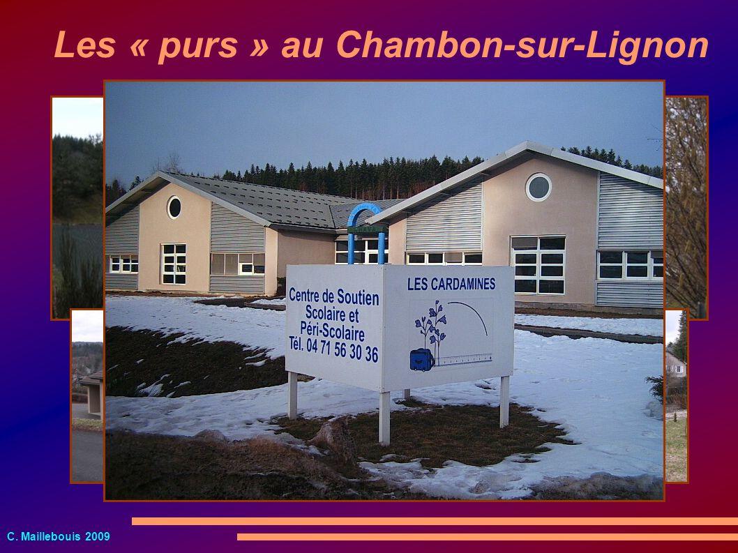Les « purs » au Chambon-sur-Lignon