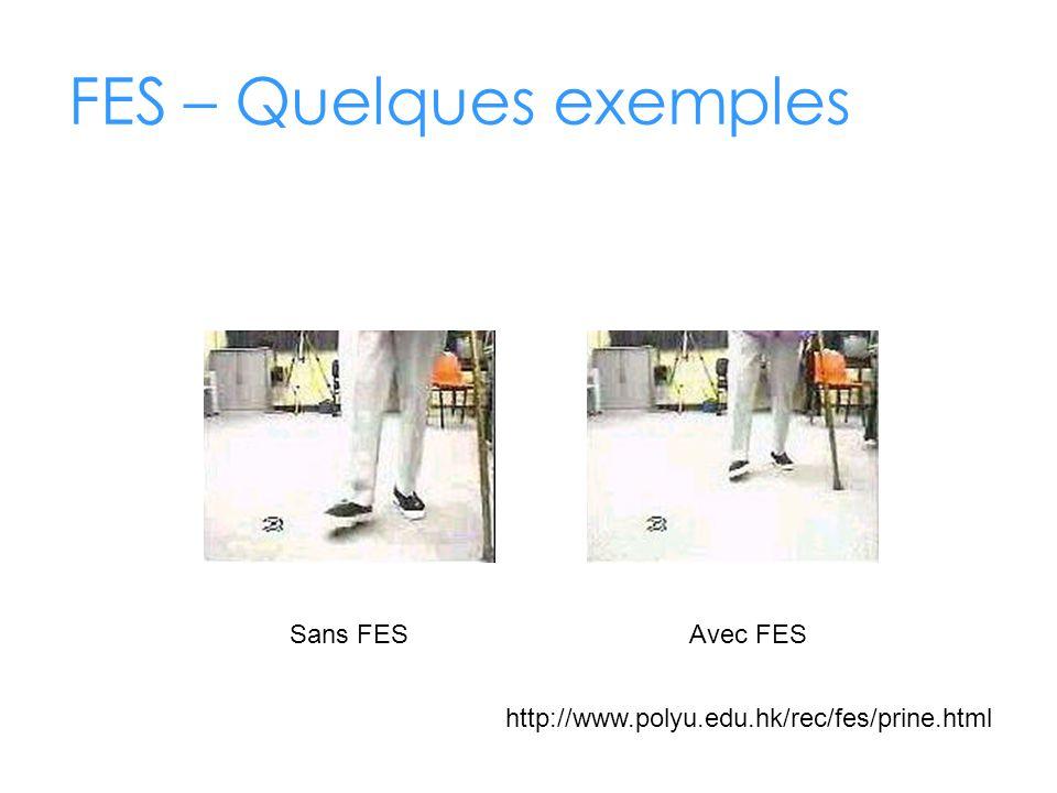 FES – Quelques exemples