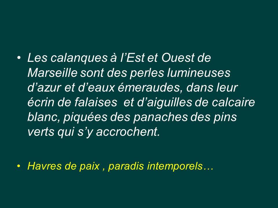 Les calanques à l'Est et Ouest de Marseille sont des perles lumineuses d'azur et d'eaux émeraudes, dans leur écrin de falaises et d'aiguilles de calcaire blanc, piquées des panaches des pins verts qui s'y accrochent.