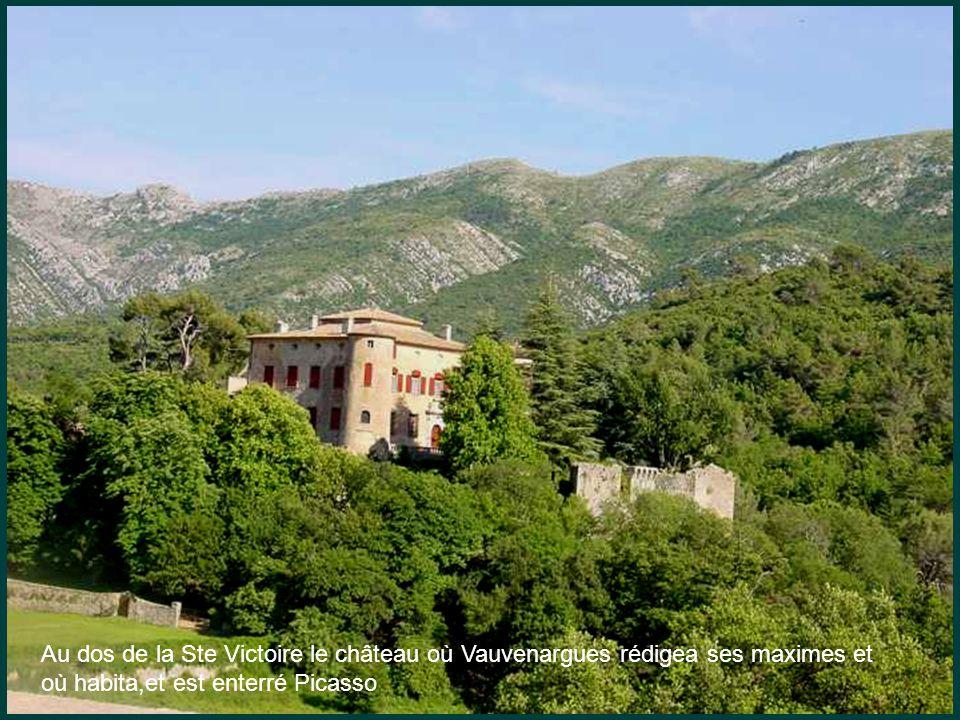 Au dos de la Ste Victoire le château où Vauvenargues rédigea ses maximes et