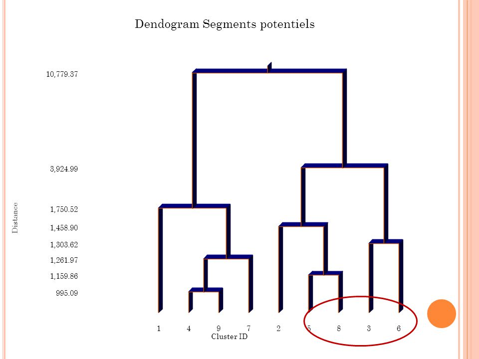 Dendogram Segments potentiels
