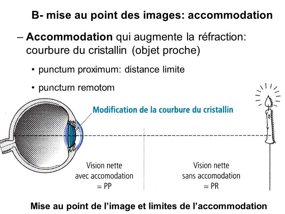 B- mise au point des images: accommodation
