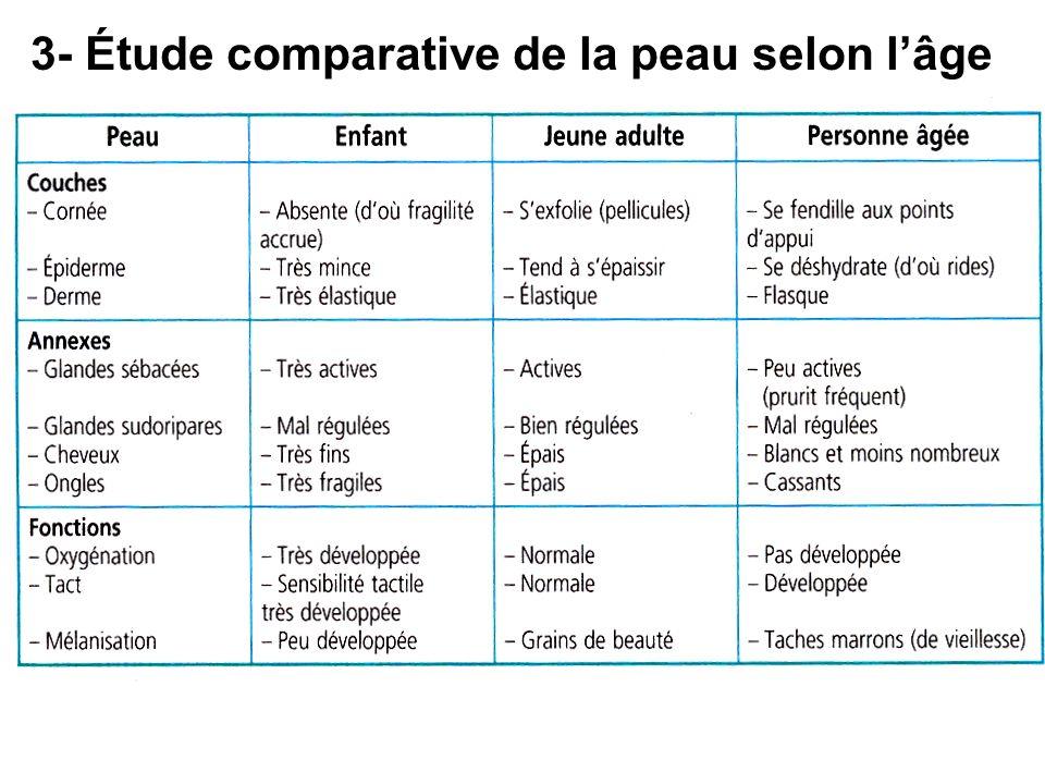 3- Étude comparative de la peau selon l'âge